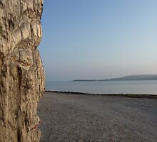 Totem looking at the Sea by Laspa31