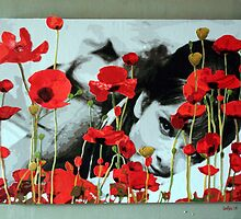 Audrey in Poppies by Samitha Hess Edwards