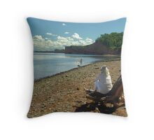 Cape Blomidon Beach Throw Pillow