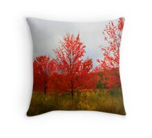 """ Fall Impressions "" Throw Pillow"