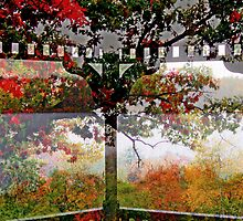 Rainy Fall Day   from The Gazebo  by Rick  Todaro