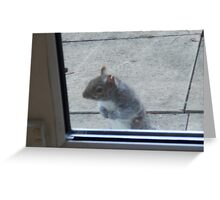 Let Me In - I'm freezing! Greeting Card
