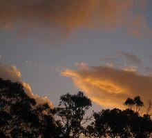 Kaleidoscope of Pale Cloud by GemmaWiseman