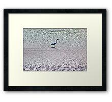Water Walker Framed Print