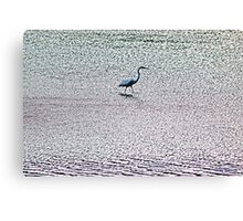 Water Walker Canvas Print