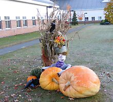 Littleton Hospital Pumpkins by JBTHEMILKER