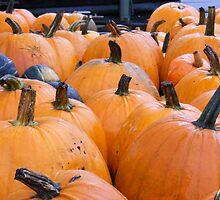 Harvest of Pumpkins by JBTHEMILKER