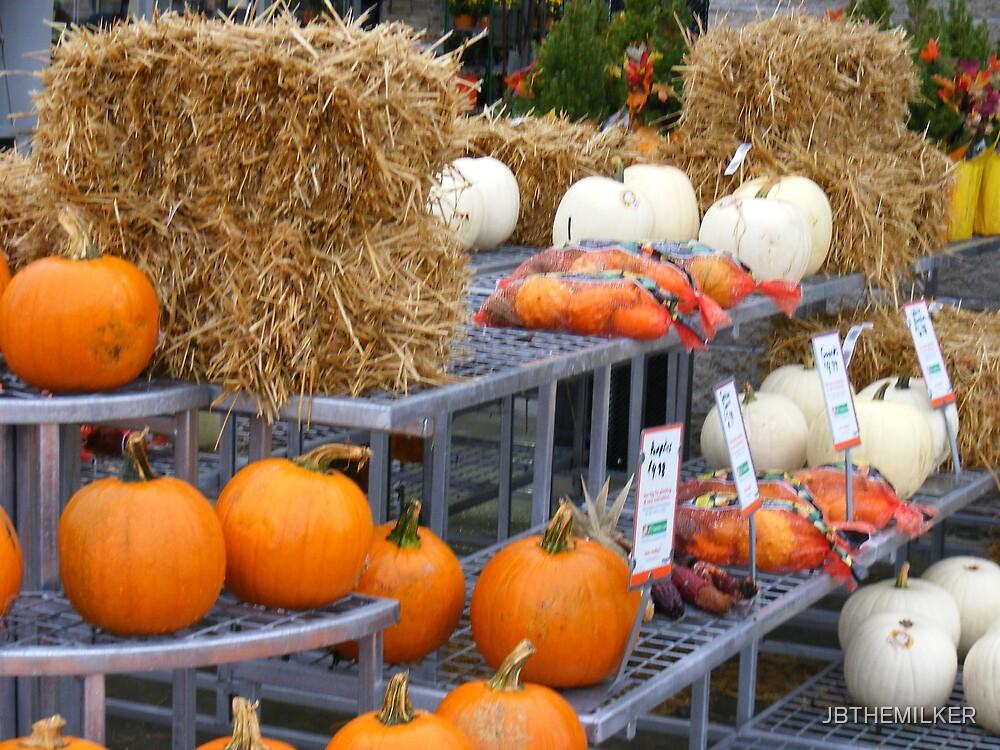 Regular and white pumpkins by JBTHEMILKER