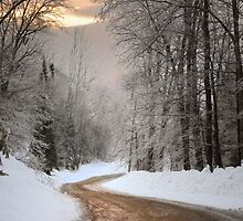 My Road by Gisele Bedard
