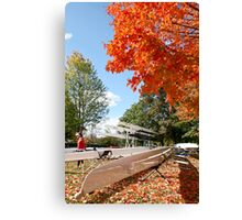 The colours of Fall Canvas Print