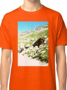 mountain pass cow Classic T-Shirt