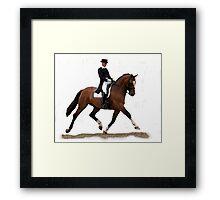 Dressage Horse Study Portrait Framed Print