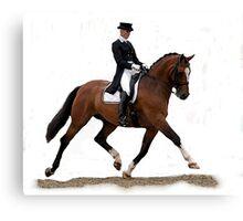 Dressage Horse Study Portrait Canvas Print