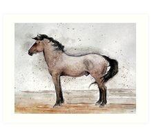 Mustang Horse Portrait Art Print