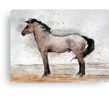 Mustang Horse Portrait Canvas Print