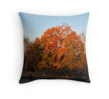 In Late Day Sun Throw Pillow