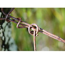 Wire Knot Photographic Print