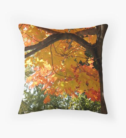 A tree of many colours Throw Pillow