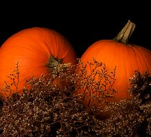 Pumpkins in Waiting by Trudy Wilkerson