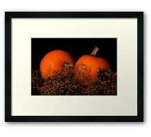 Pumpkins in Waiting Framed Print