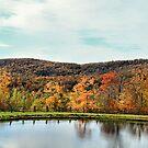 Bolton Valley Pond by Deborah  Benoit