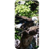 Bald Eagle with Fish iPhone Case/Skin