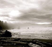 Oregon Coast by ajparkinson