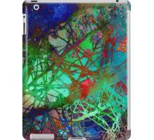 λ Velorum iPad Case/Skin