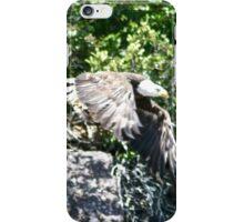 Bald Eagle in Flight iPhone Case/Skin