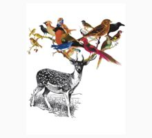 DEER BIRDY T-Shirt