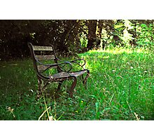 Woodland bench Photographic Print