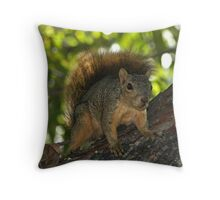 """"""" The Visitor """" Throw Pillow"""