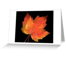 2 FAll leaves #1 Greeting Card