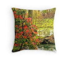 The Other Side of Serenity Throw Pillow