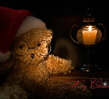 Warm Wishes by Maria Dryfhout