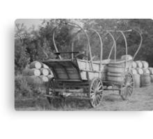 1855 Metal Print