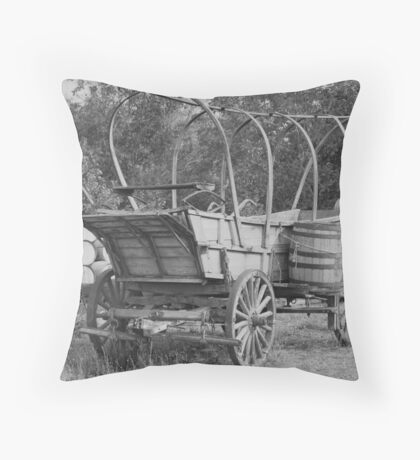 1855 Throw Pillow