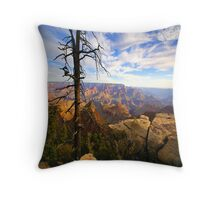 """The Grand View"" Throw Pillow"