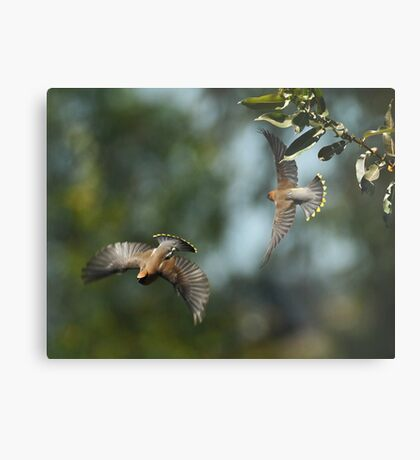 Two-Fer Metal Print