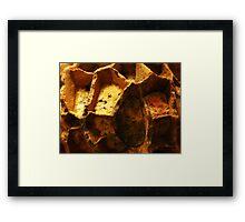 The Hidden Land – The Queen's Chamber Framed Print