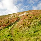 South West Coast Path by Christopher Bookholt
