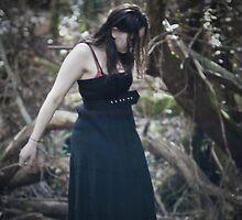 Wanderer by Jason Asher