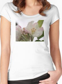 Spring blossoms in the rain Women's Fitted Scoop T-Shirt