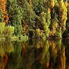 Autumn Water Reflections - New Lanark Scotland by simpsonvisuals