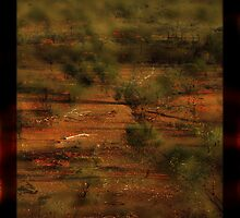 Signs of Life Outback © by Vicki Ferrari