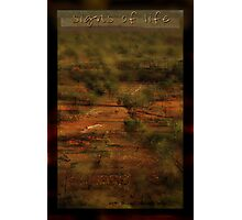 Signs of Life Outback © Photographic Print