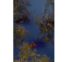 Observer Above © Vicki Ferrari Photography Photographic Print
