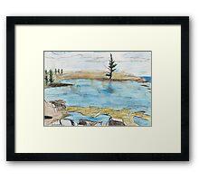 Lone Pine, Across Emily Bay Framed Print