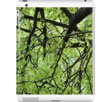 Green Tree Branches iPad Case/Skin