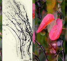 October mood by Vasile Stan